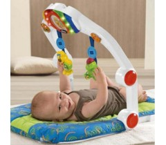 Chicco - Baby Trainer Ergo Gym